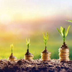 2019: Agevolazioni Fiscali del Bonus Ristrutturazioni e Bonus Verde