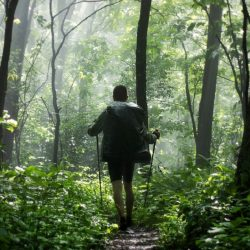 Essere un vacanziere responsabile: alcune semplici regole