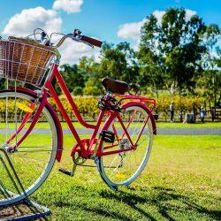 Bonus per l'acquisto di biciclette e monopattini